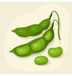 Stylized of fresh ripe bean pods vector image