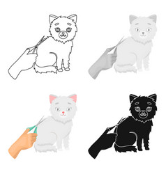 grooming of a cat icon in cartoon style isolated vector image