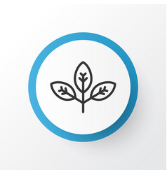 Branch icon symbol premium quality isolated vector