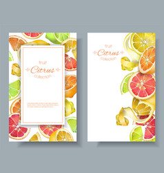 Citrus vertcal banners vector