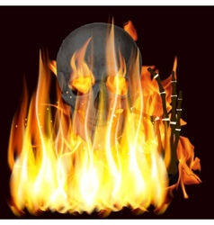 flames and skull vector image vector image