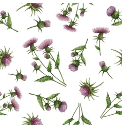 Watercolor seamless pattern with milk thistle vector