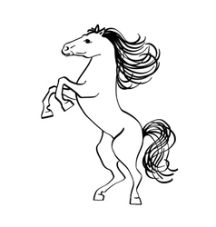 Outline drawing of a horse isolated on white vector