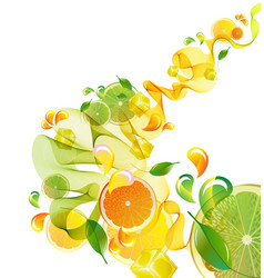 Citrus abstract splash vector