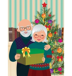 Elderly couple celebrating Christmas vector image vector image