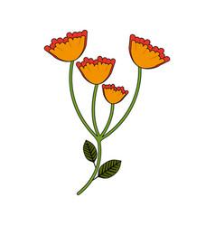 Beautiful marigold flower vector