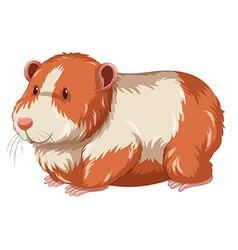 Furry hamster with happy face vector
