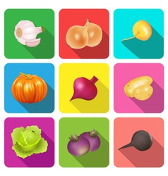 Set of icons on a theme vegetables vector