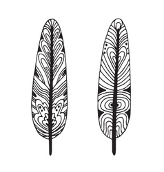 Feathers in black and wight graphic style vector