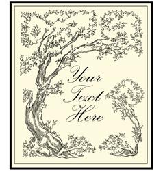Tree Oak beech forest tree vector image