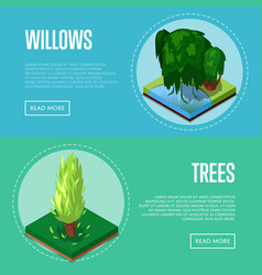 decorative plants for park design posters vector image