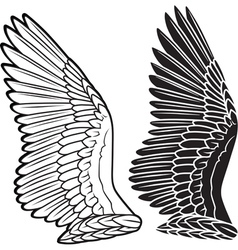dove wings vector image vector image
