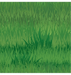 Grass seaml 380 vector