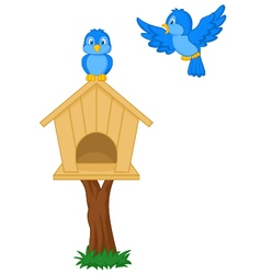 Birds and bird houses vector