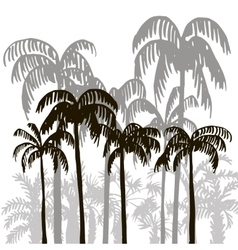 Rain forest palm tree silhouettes vector