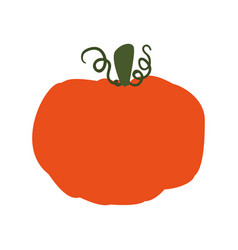 Pumpkin fresh vegetable vector