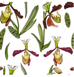 Seamless pattern with beautiful exotic orchid vector