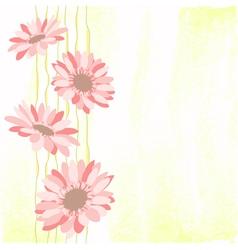 Springtime colorful daisy flower vector
