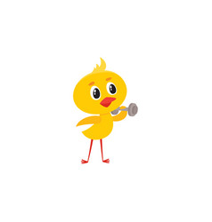 cute baby chicken character doing sport exercises vector image vector image