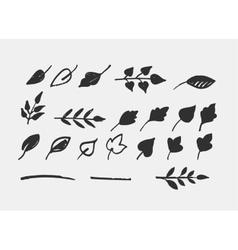 Hand drawn leaves icons and elements vector image