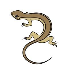 little lizard vector image vector image
