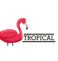 tropical leaves animal card vector image
