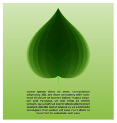 Eco leaf information vector