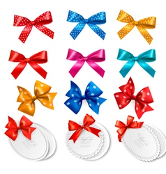 Big collection of colorful gift bows and labels vector image