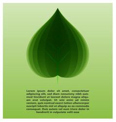 eco leaf information vector image vector image