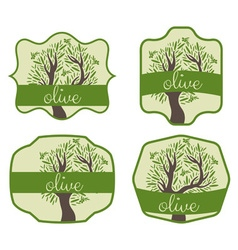 Set of label with olive tree vector