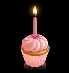 Pink fairy cake cupcake with birthday candle vector
