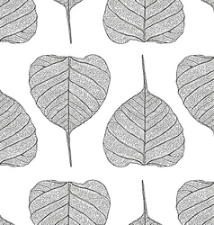 pipalleaf pattern vector image