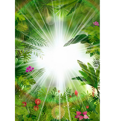 tropical background beautiful vector image vector image