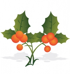 two berries vector image vector image