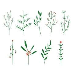 Decorative twigs brush plants vector