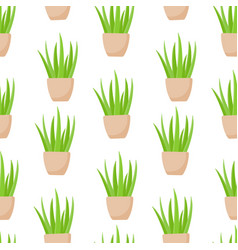 Aloe vera plant in pot seamless pattern vector