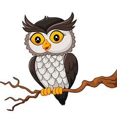 Cartoon owl bird posing on the tree vector image vector image