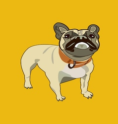 French bulldog on yellow background vector