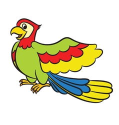 Cartoon parrot on a white background vector image