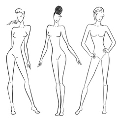 The sketch of women in different poses vector image