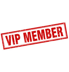 Vip member square stamp vector