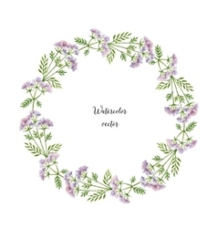 Watercolor round frame of valerian vector
