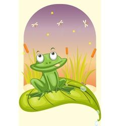 frog on a leaf vector image