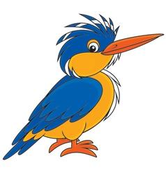 Kingfisher vector image