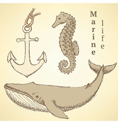 Sketch seahorse whale and anchor in vintage style vector