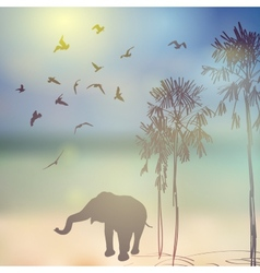 Elephant birds palm silhouette on sunny sky and vector