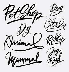 Pet shop and animal hand written typography vector