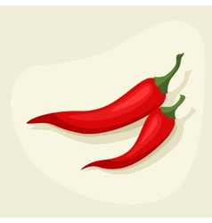 Stylized of fresh ripe chili peppers vector image vector image