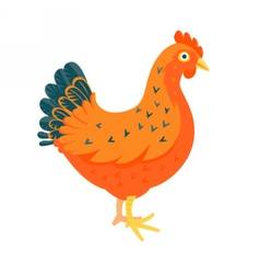 Red chicken funny vector image