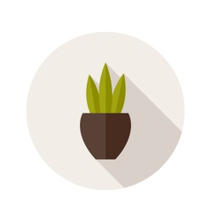 Pot with three leaves flat icon vector